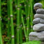 Ładny ,a także schludny zieleniec to zasługa wielu godzin spędzonych  w jego zaciszu w trakcie pielegnacji.